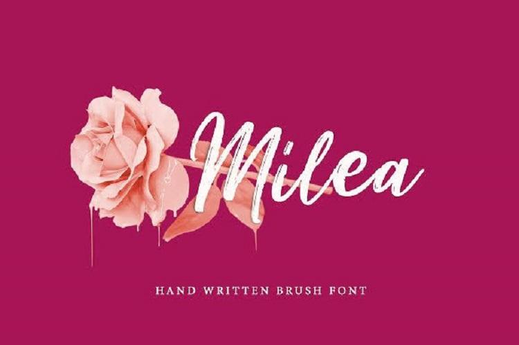 Milea Brush Font Duo Free