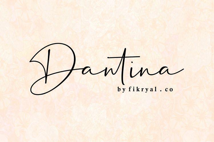 dantina-handwritten-font