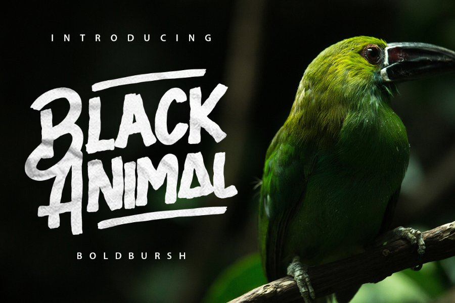 black-animal-font