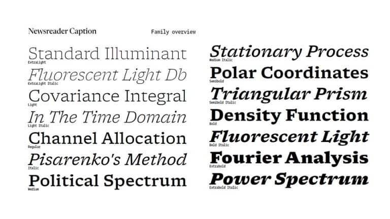Newsreader-Serif-Font-Family-2