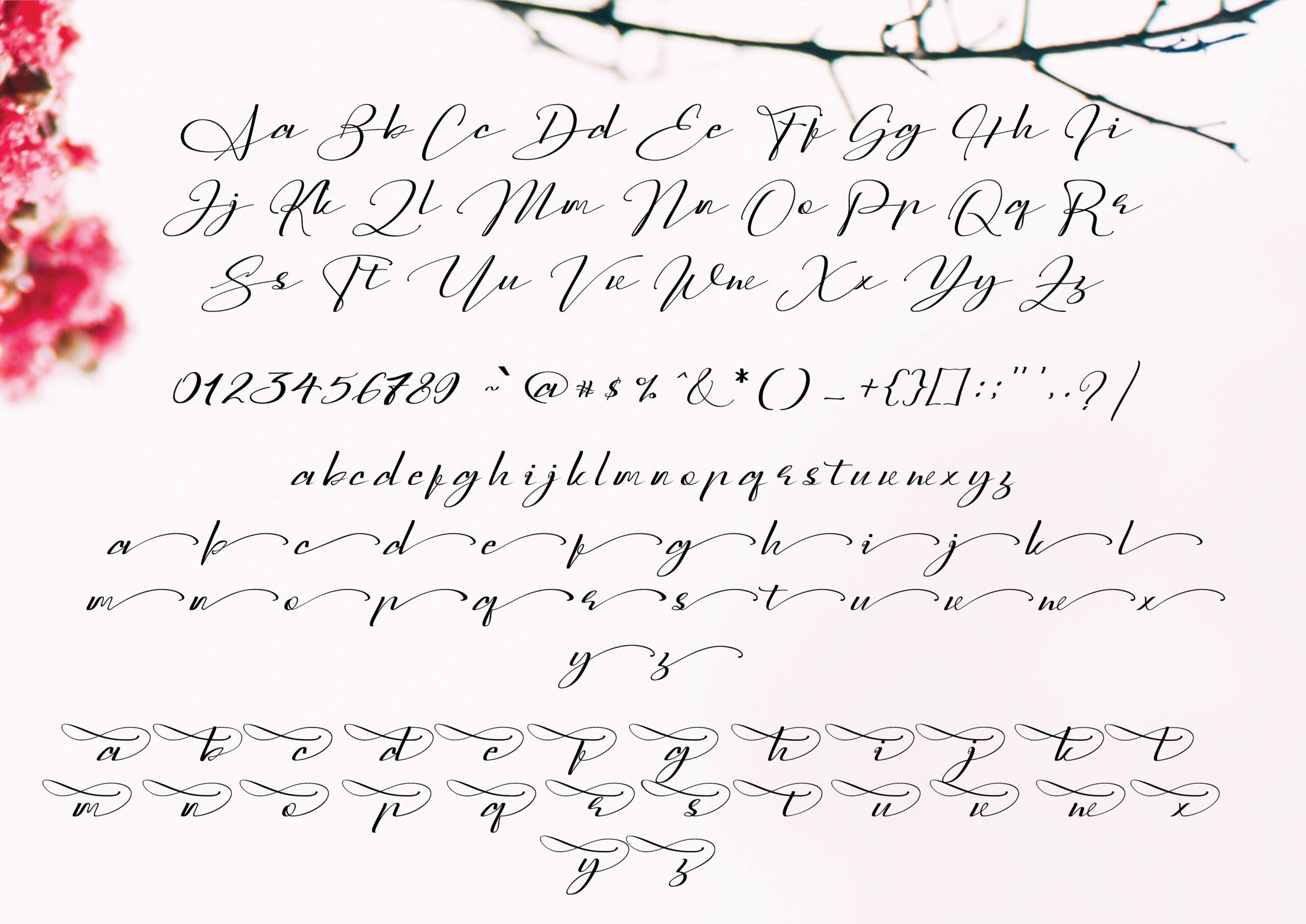 Sarony Handwritten Font