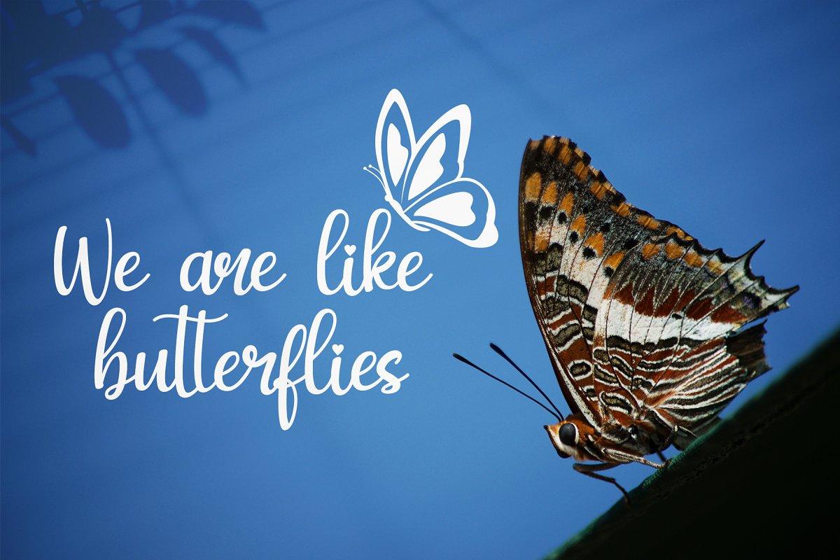 my-butterfly-2-