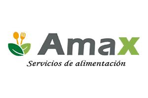 Grupo Amax Chile