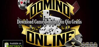 Sejarah Dan Pengenalan Domino Qiu Qiu