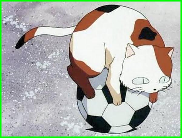 nama kucing anime, foto anime kucing, kucing anime lucu, kucing anime kawaii, anime kucing bagus, anime cowok kucing, anime dewa kucing, anime kucing gambar, foto anime kucing lucu