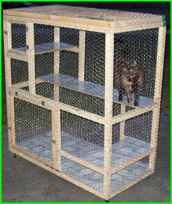 kandang kucing sederhana, kandang kucing outdoor sederhana, cara membuat kandang kucing sederhana, cara membuat kandang kucing sederhana dari kayu, rumah kucing sederhana, cara buat kandang kucing sederhana, membuat kandang kucing sederhana, cara bikin kandang kucing sederhana, kandang kucing yang besar, kandang kucing sederhana buatan sendiri, kandang kucing kayu sederhana