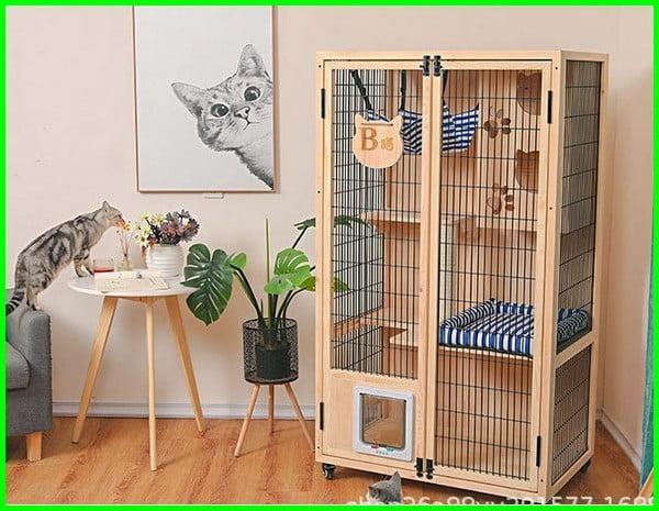 contoh kandang kucing dari kayu, kandang kucing kayu minimalis, kandang kucing kayu 2 tingkat, kandang kucing kayu besar, kandang kucing tingkat 2 dari kayu, kandang kucing dari kayu simple, kandang kucing 60x40, kandang kucing kayu murah, kandang kucing kayu sederhana