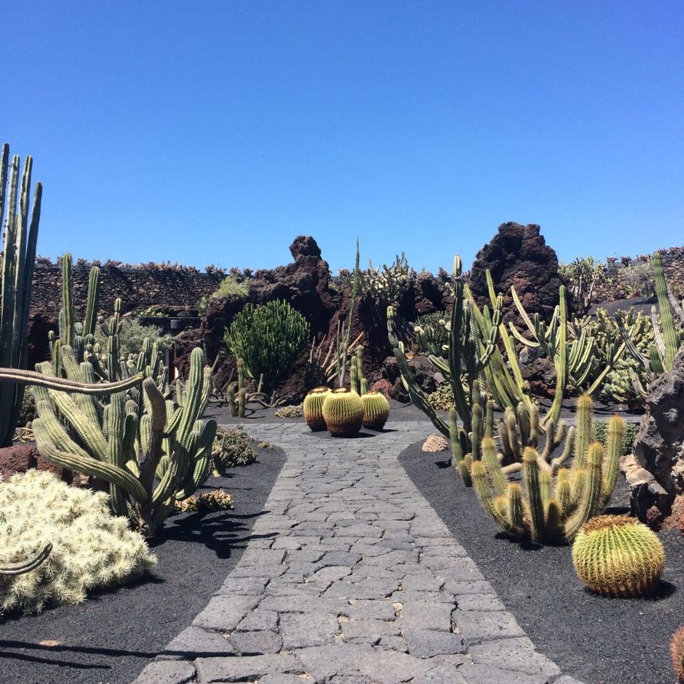 IMG_3547-e1506877768619 How to visit Lanzarote Island in a week: the attractions and the beaches.