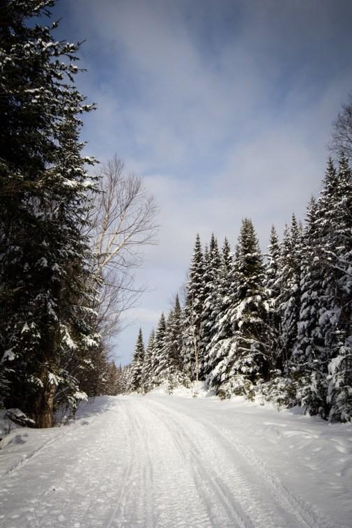 Chemin enneigé sur le Sentier des Caps.