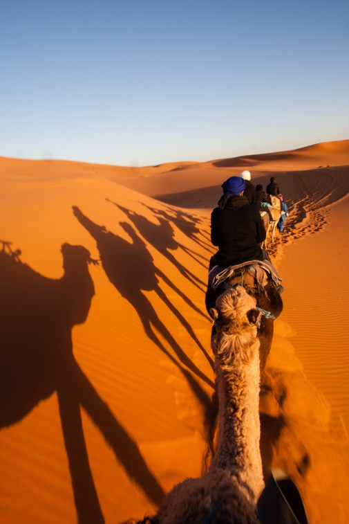Sur nos dromadaires, dans les dunes de Merzouga.