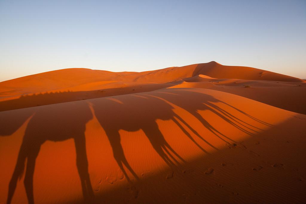Nos ombres projetés sur les dunes, Merzouga.