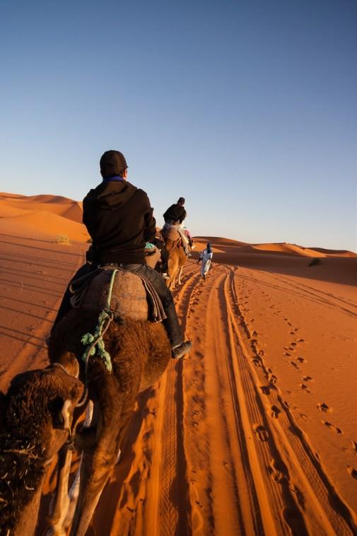 En route vers notre campement de Merzouga, sur nos dromadaires.