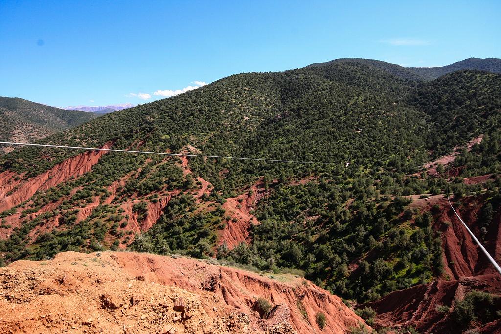 Terre rouge, arbres verts profonds et tyrolienne.