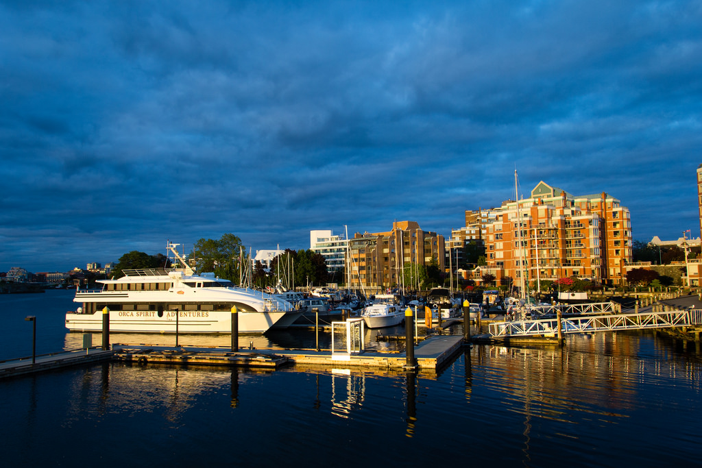 Port de plaisance entre golden hour et heure bleue.
