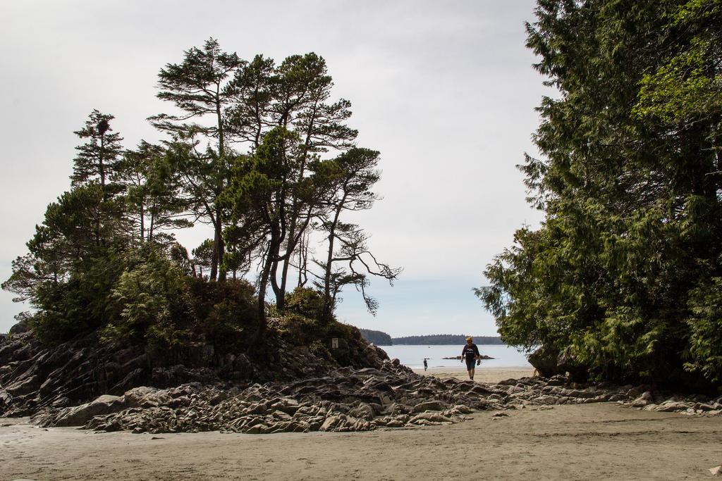 Plage arborée sur l'ile de Vancouver.