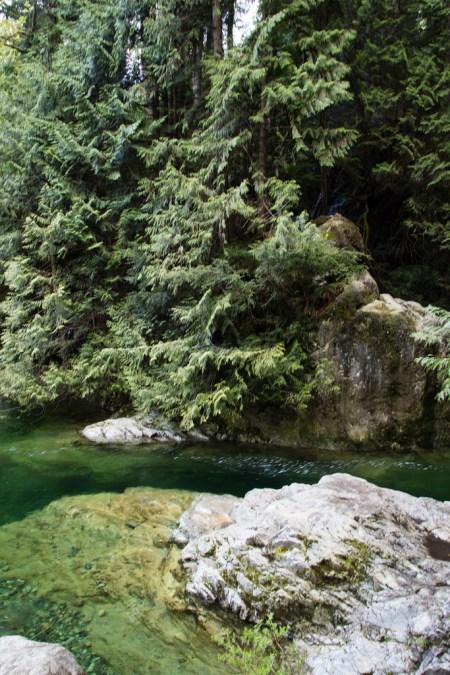 Bassin dans La banlieue verdoyante de Vancouver City.