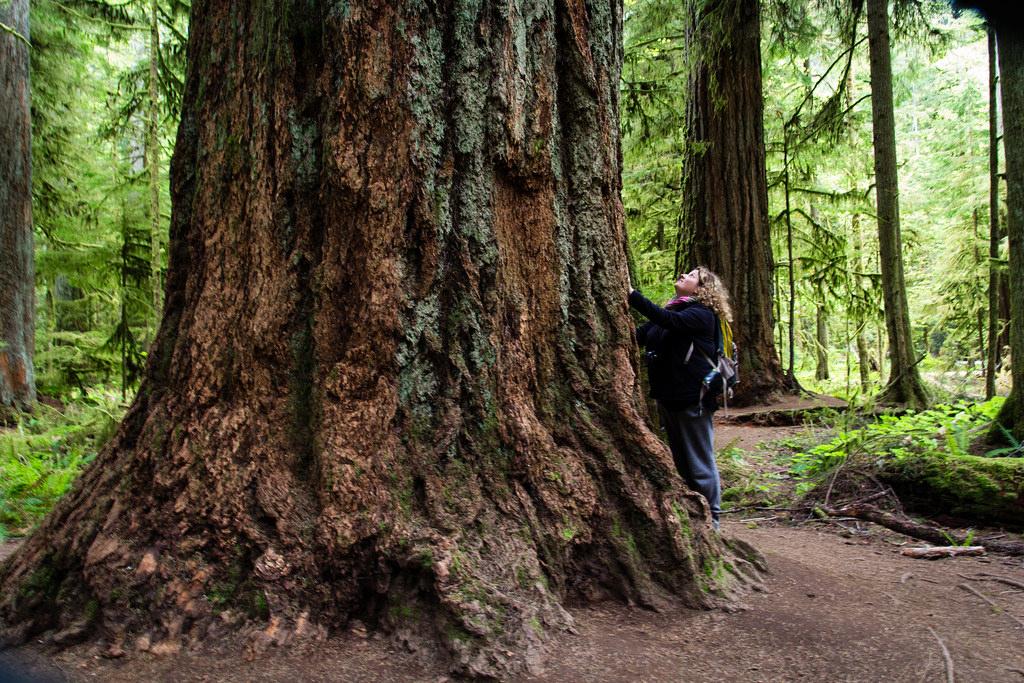 Mise à échelle, on est vraiment tout petit face à la nature !