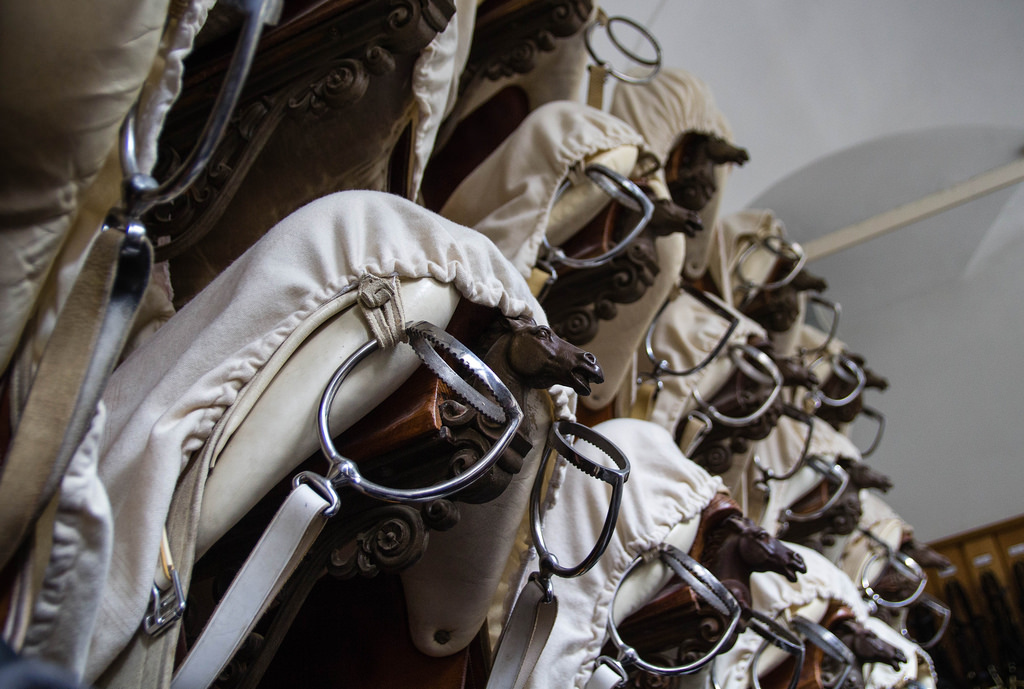 Détail des selles des cavaliers de l'École d'Équitation Espagnole de Vienne.
