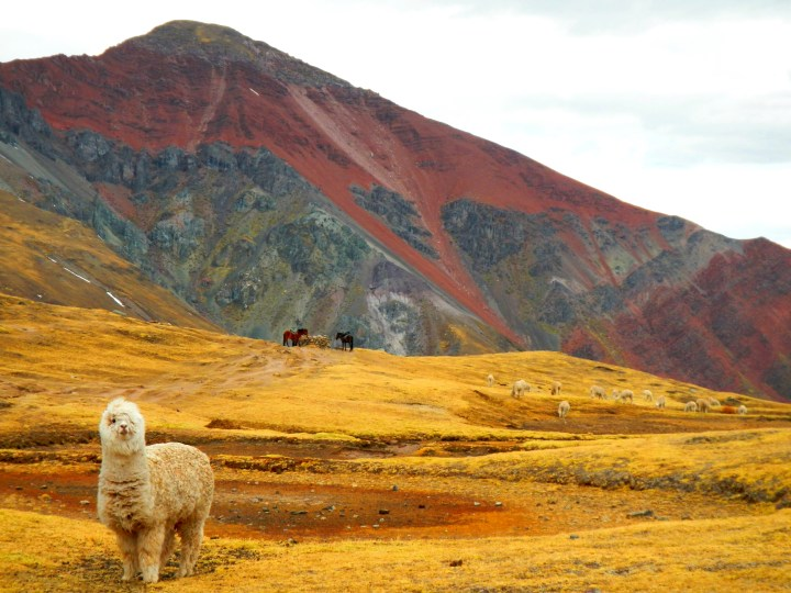 Peru, inca, ruins, machu picchu, motorcycle peru, cusco, mountains, hiking, adventure, wanderlust, dagsvstheworld, rtw, travel, incan ruins, mountains, rainbow mountain peru, nevado ausangate, puno, ausangate, how to find rainbow mountain
