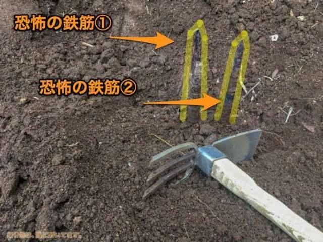 第二の畑作り、鉄筋針地獄!