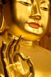 密教僧侶ヒーラー正仙「法名」-321643_454766014607452_343187443_a.jpg
