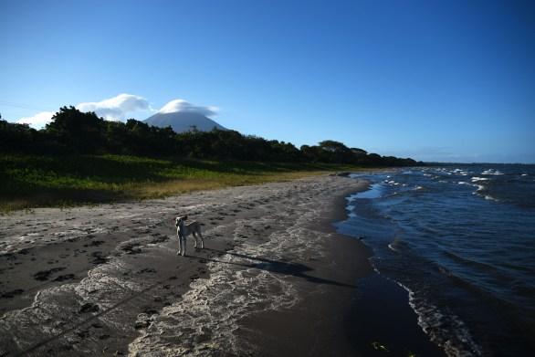 Ometepe –Ears to the wind!