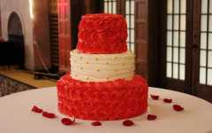 Judd: Gay wedding cake blurs freedoms