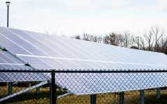 Lee: Solar power creates sunny outlook for everyone