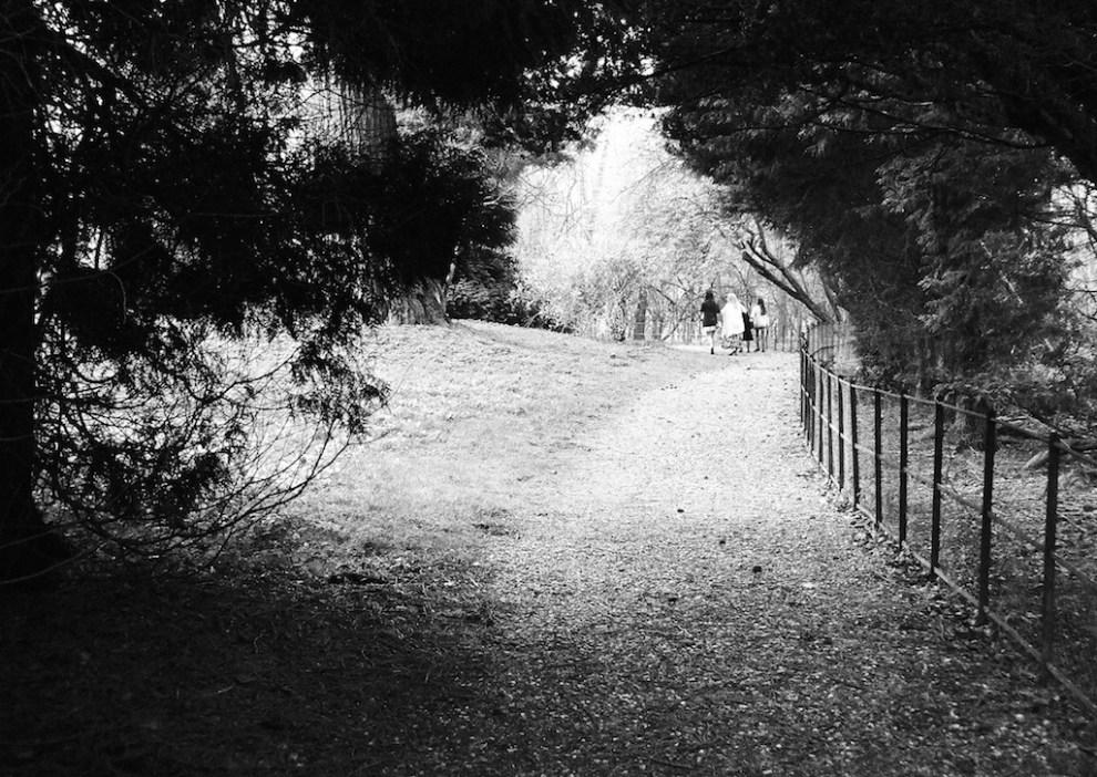 A Stroll On Sunday