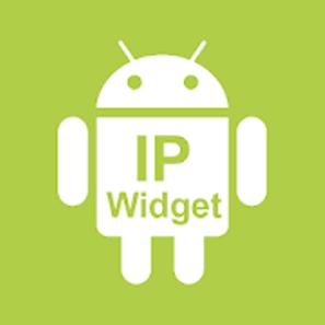 IP Widget v1.38.10 build 2012 APK 2