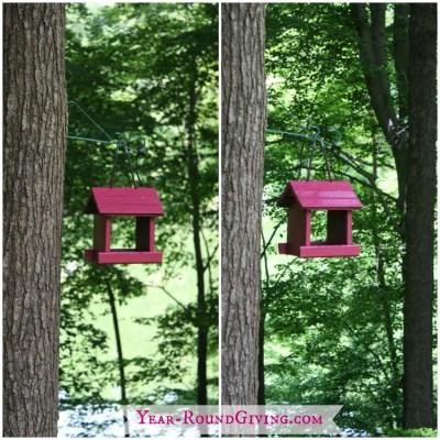 Easy Ideas to Brighten Up a Garden 6