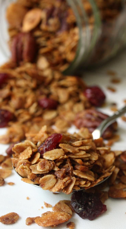 Homemade Cinnamon Pecan Raisin Granola Recipe