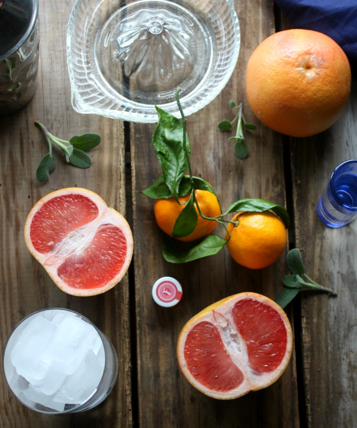 Making Cocktails: Citrus Sage Vodka Cooler