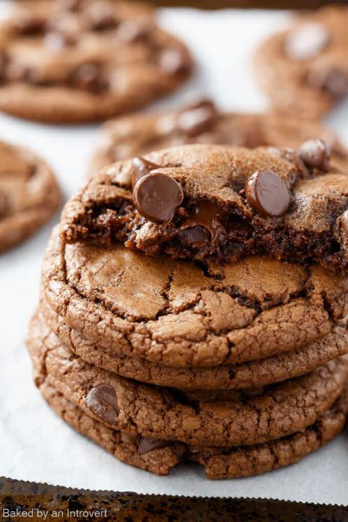 Double Chocolate Nutella Cookies + 20 Recipes for Chocolate Cookies