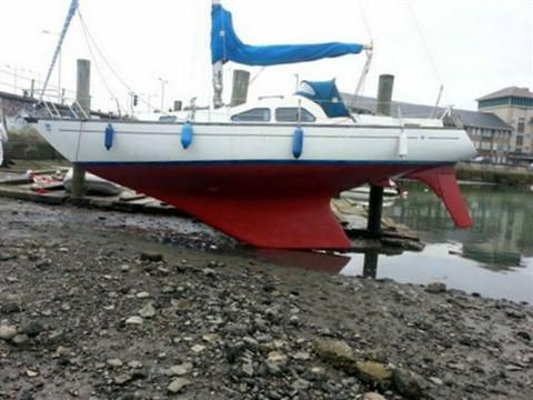 King Cruiser 29 For Sale Daily Boats Buy Review