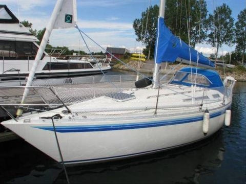 Mamba 311 For Sale Daily Boats Buy Review Price