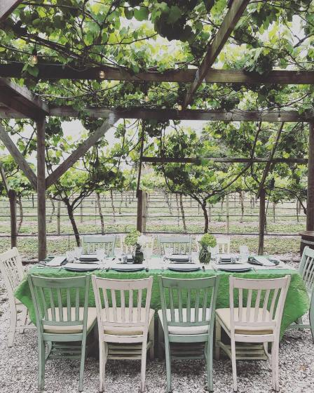 wedding venues in florida - Fiorelli Winery and Vineyard 1