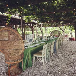 wedding venues in florida - Fiorelli Winery and Vineyard 5