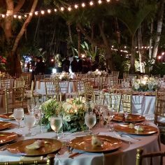wedding venues in florida - bamboogallery 7