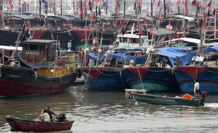 Fishermen drive a boat next to fishing ships docked at a port to shelter from Typhoon Wutip in Sanya, Hainan province September 29, 2013. Picture taken September 29, 2013. REUTERS/Stringer
