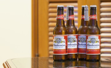 CHIANGMAI , THAILAND - FEB 20 2017: Budweiser Beeris most popular in American, an American lager first introduced in 1876. (Photo: Shutterstock/ DMstudio House)