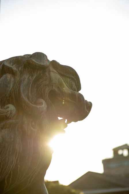 traditional komainu statue in japan on sunny day