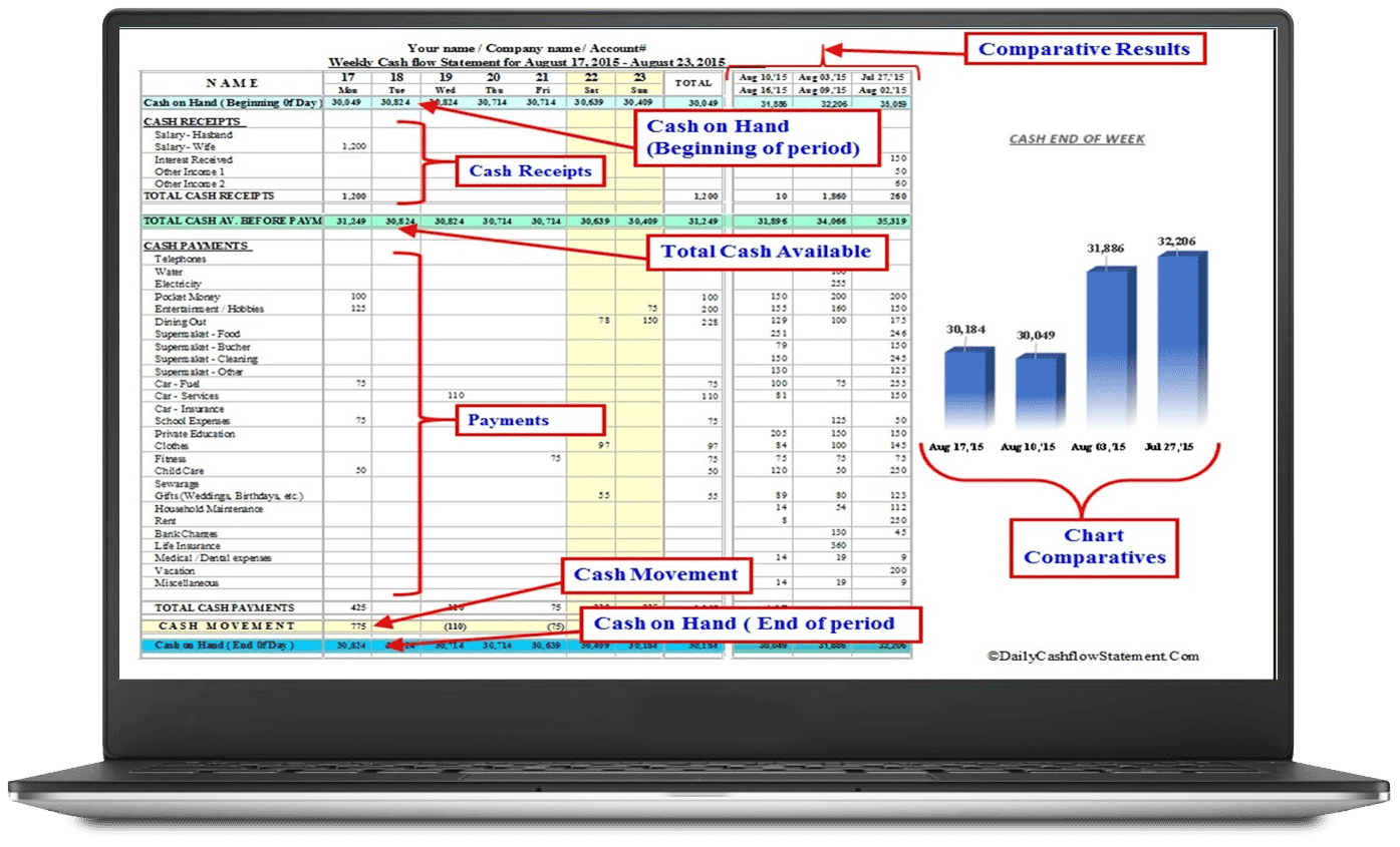 Daily Cash Flow Statement Expense Manager