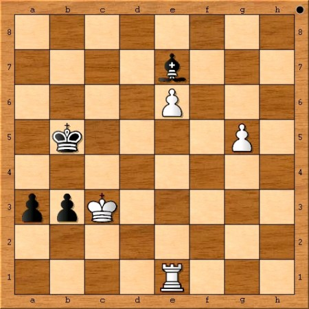 The final position from the 2014 FIDE World Chess Championship Match between Magnus Carlsen and Viswanathan Anand.