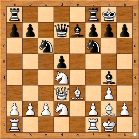The position after Viswanathan Anand castles on move 11.