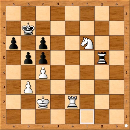 Position after Viswanathan Anand plays 64... Rg5.