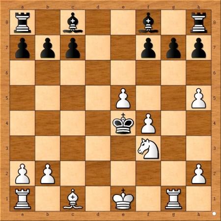 Position after 15... Ke4.