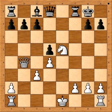 Position after 14. Ne5