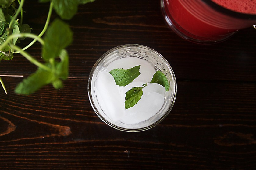 watermelon-gin-mint-fizz-7