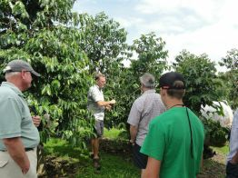 Tour guide Gary Strawn gives the group an up close look at a coffee tree at Kona Mountain Coffee farm.